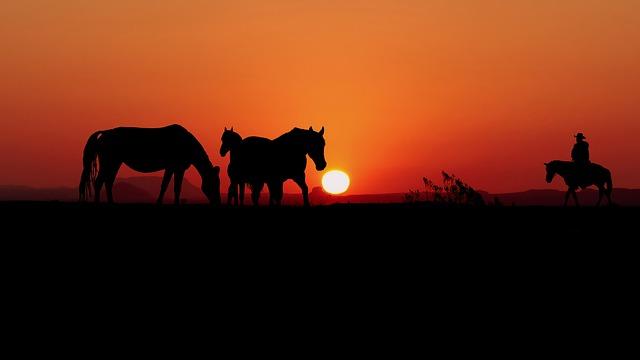 Passeio de Cavalo nos Canyons